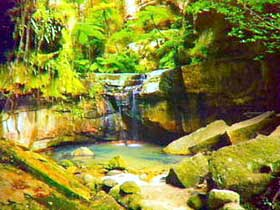 Carnarvon Gorge Carnarvon National Park - Accommodation Fremantle