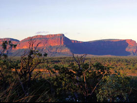 Blackdown Tableland National Park - Accommodation Fremantle