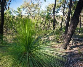Brisbane Ranges National Park - Accommodation Fremantle