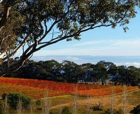 Bloodwood Estate