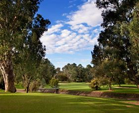 Commercial Golf Course - Accommodation Fremantle