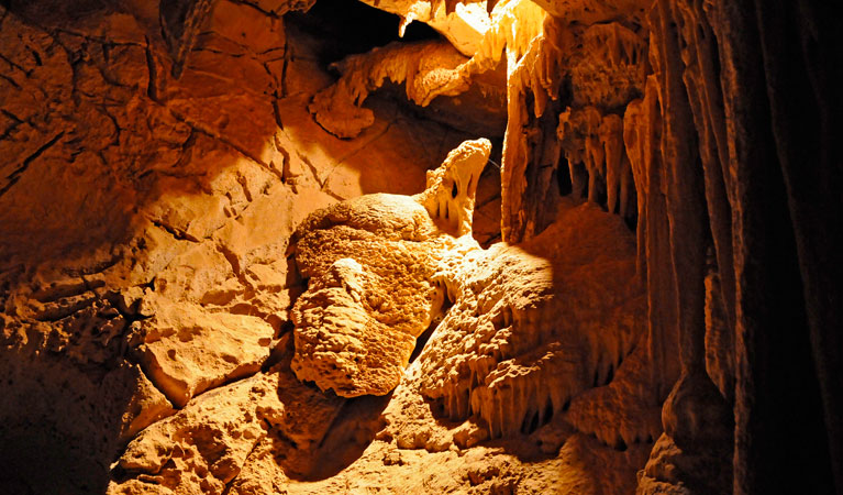 Fig Tree Cave - Accommodation Fremantle