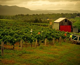 Around Hermitage Wine and Food Trail Hunter Valley - Accommodation Fremantle