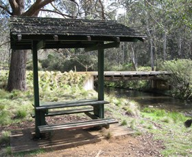 Barrington Tops State Forest - Accommodation Fremantle