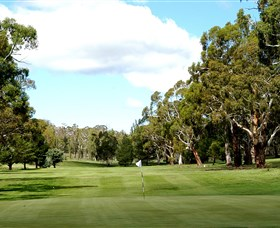 Cooma Golf Club - Accommodation Fremantle