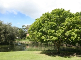 Hervey Bay Botanic Gardens - Accommodation Fremantle