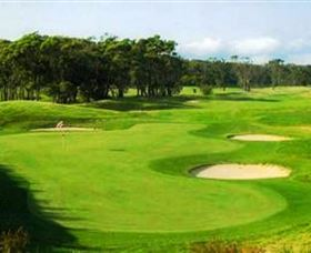 Shoalhaven Heads Golf Club - Accommodation Fremantle