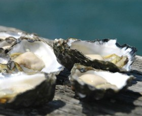 Jim Wilds Oyster Service - Accommodation Fremantle