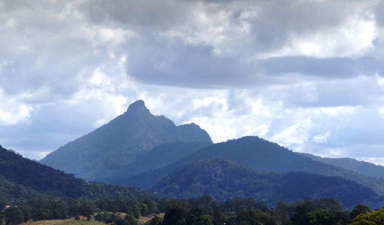 Wollumbin National Park - Accommodation Fremantle
