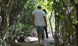 Three Sisters walking track - Accommodation Fremantle