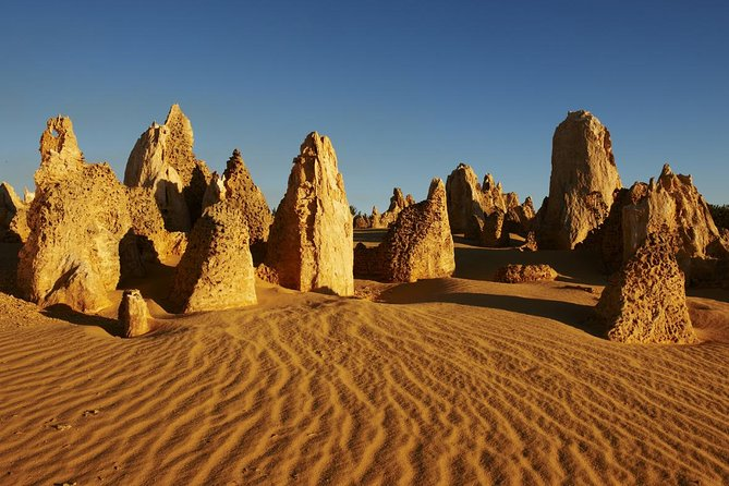 Pinnacles Day Trip from Perth Including Yanchep National Park - Accommodation Fremantle