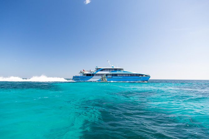 Fremantle to Rottnest Island Roundtrip Ferry Ticket - Accommodation Fremantle
