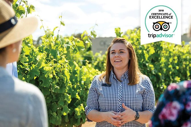 Swan Valley Wine Adventure - Half Day Boutique Winery Tour - Accommodation Fremantle