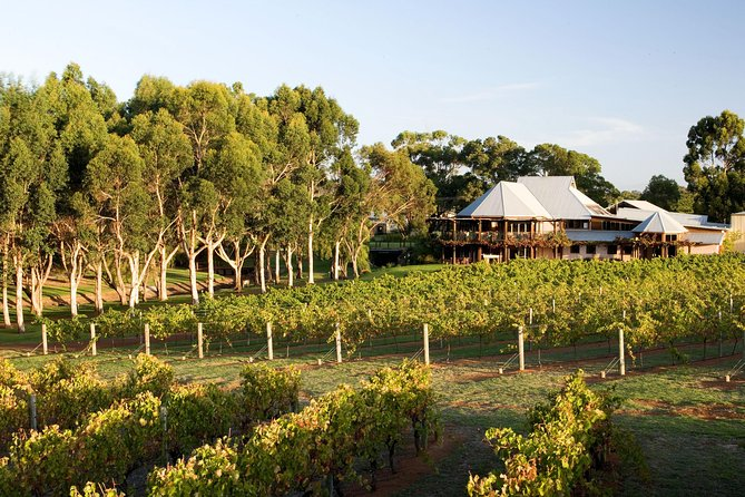 Margaret River and Geographe Bay Region Day Trip from Perth - Accommodation Fremantle