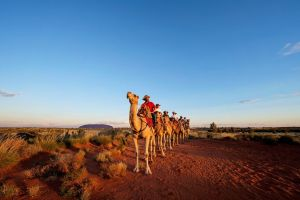 Uluru Small-Group Tour by Camel at Sunrise or Sunset - Accommodation Fremantle