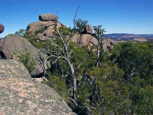 Evans Crown Nature Reserve - Accommodation Fremantle