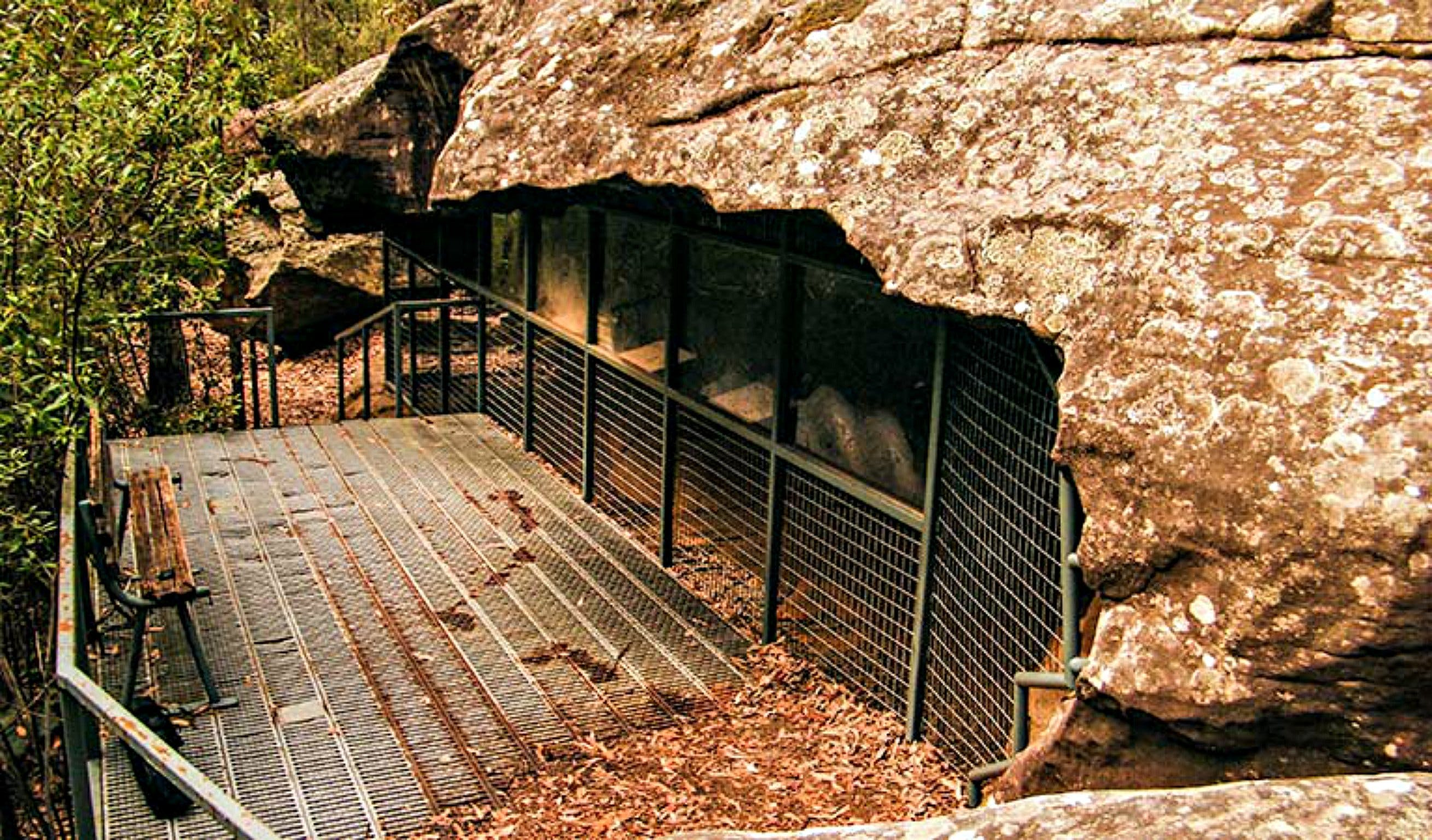 Red Hands Cave Walking Track - Blue Mountains National Park - Accommodation Fremantle