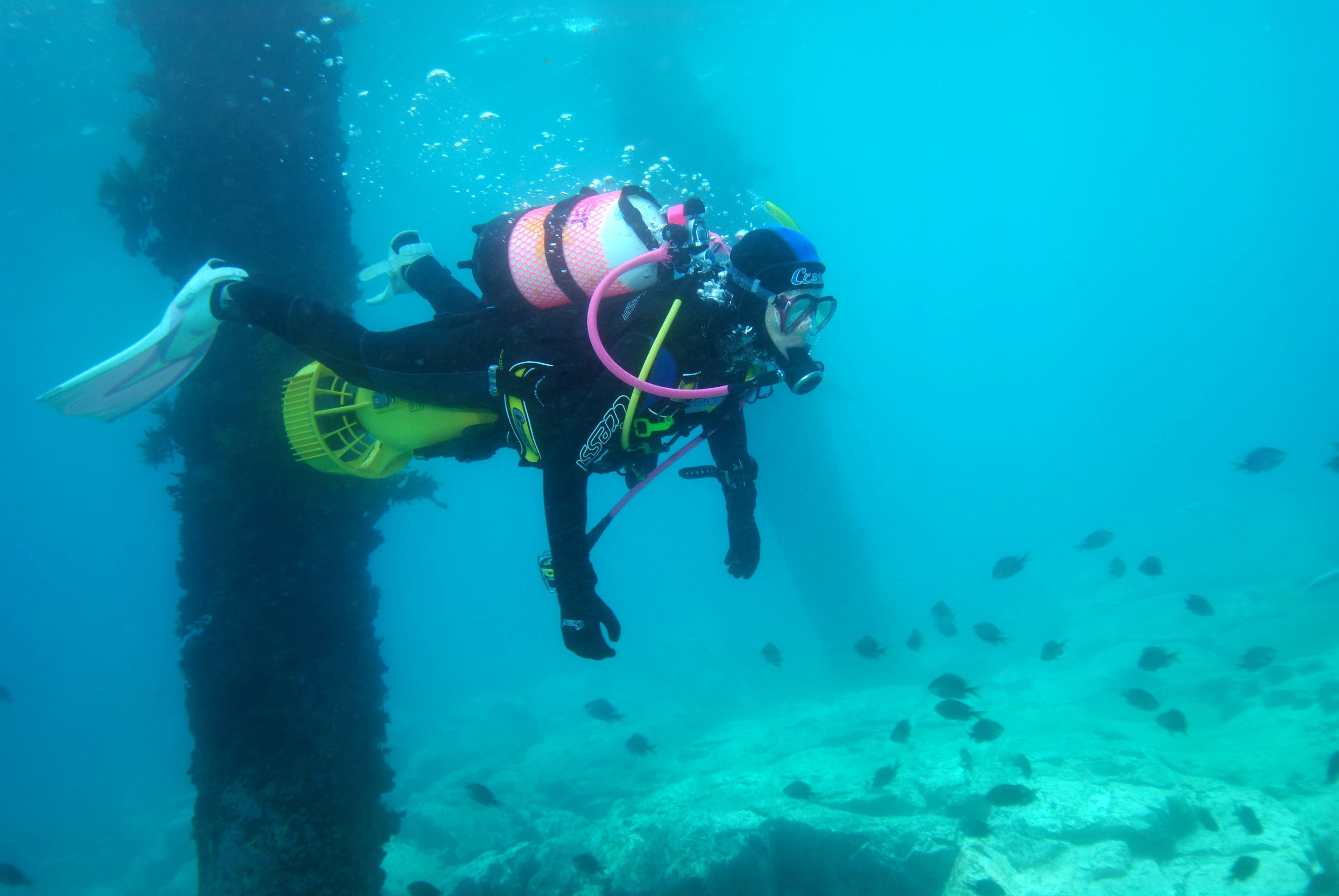 Shellharbour Scuba  and Photography Centre - Accommodation Fremantle
