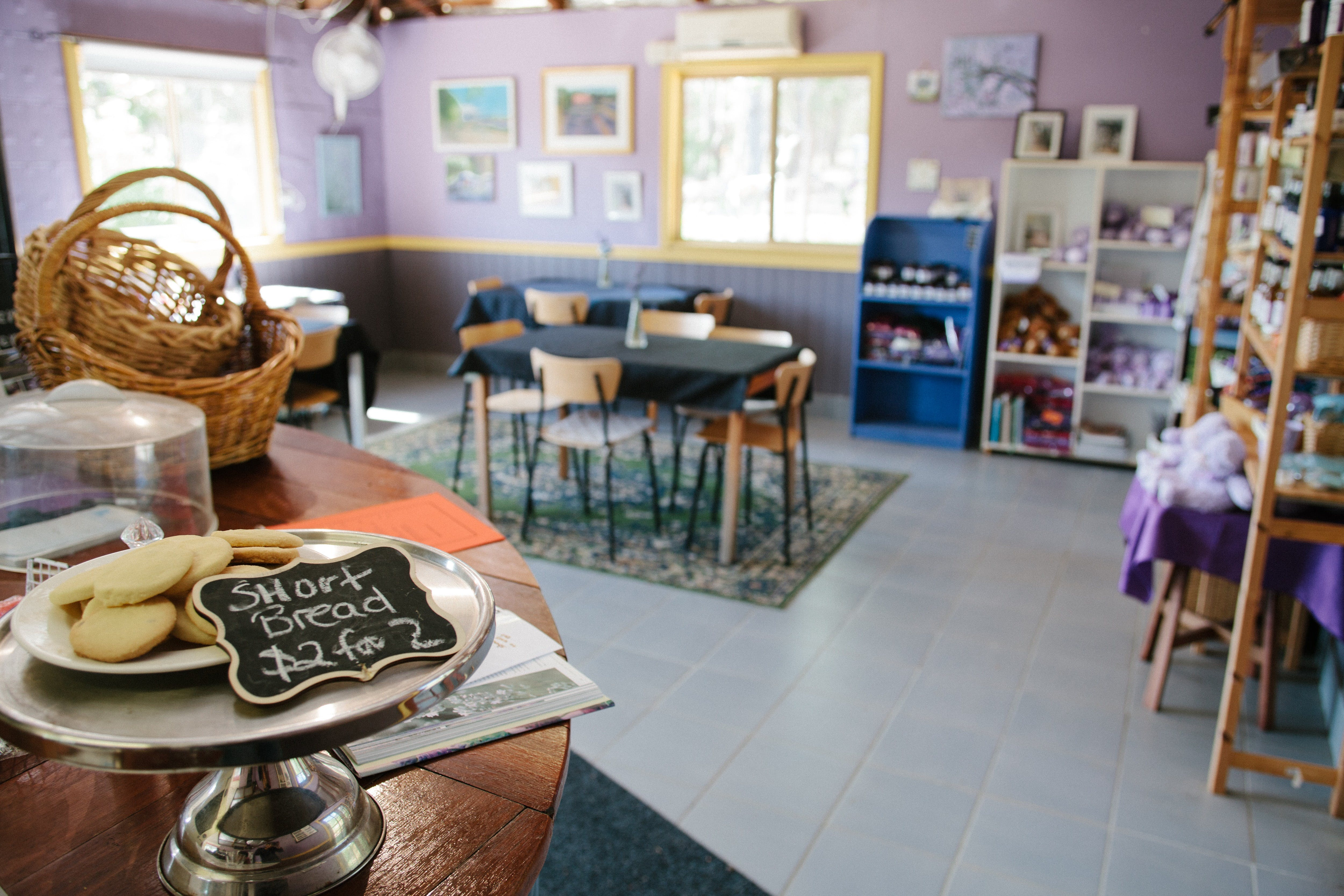 Nannup Lavender Farm - Accommodation Fremantle