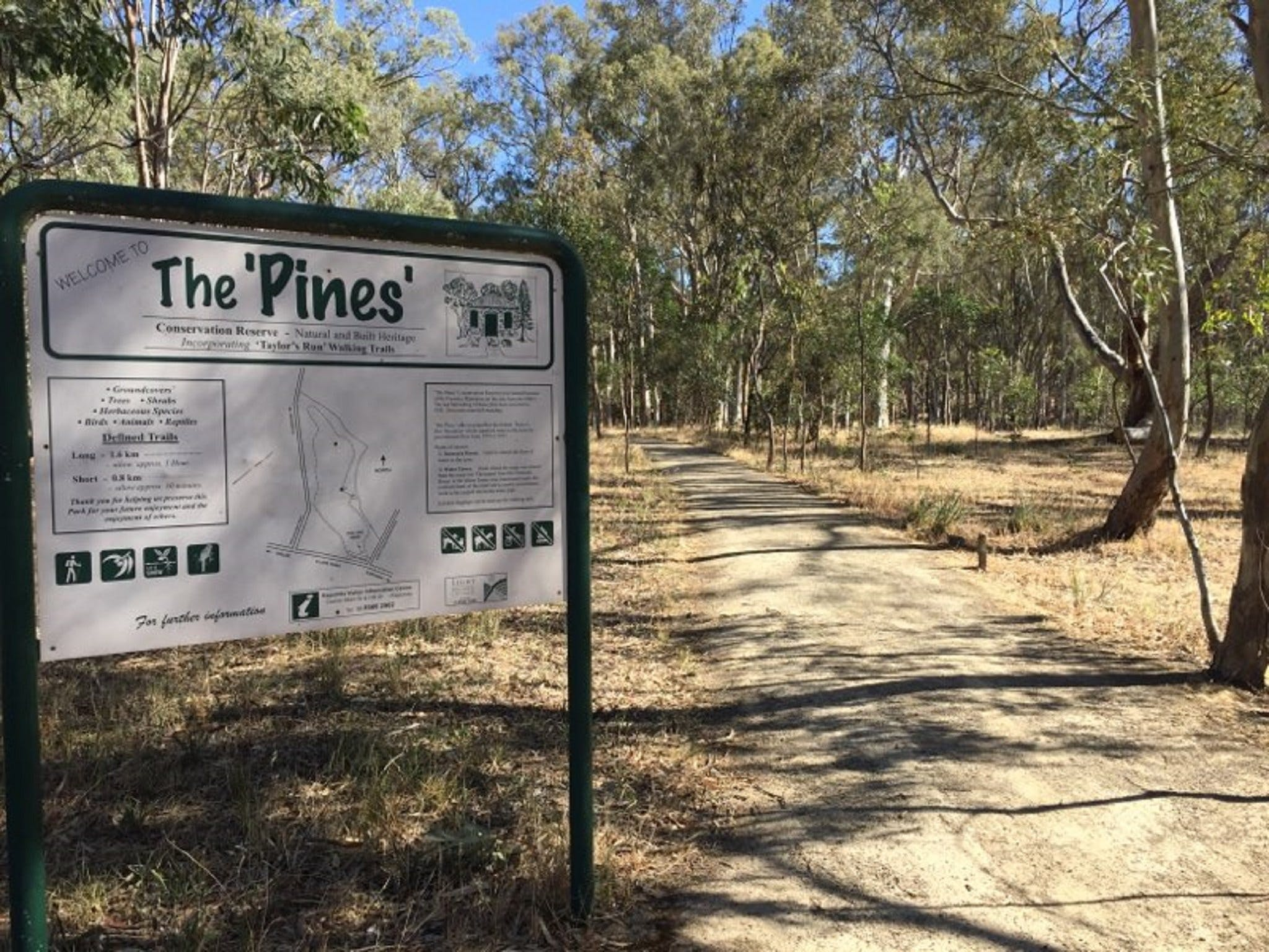 The Pines Conservation Reserve - Accommodation Fremantle