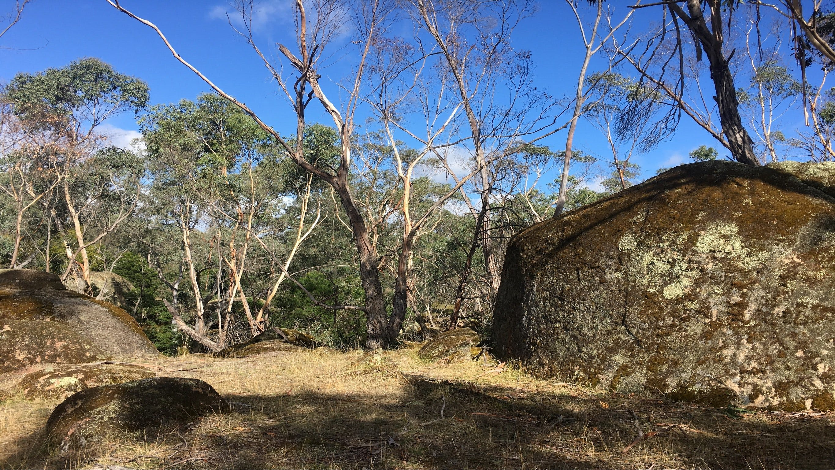 Bailey's Rocks - Dergholm State Park - Accommodation Fremantle