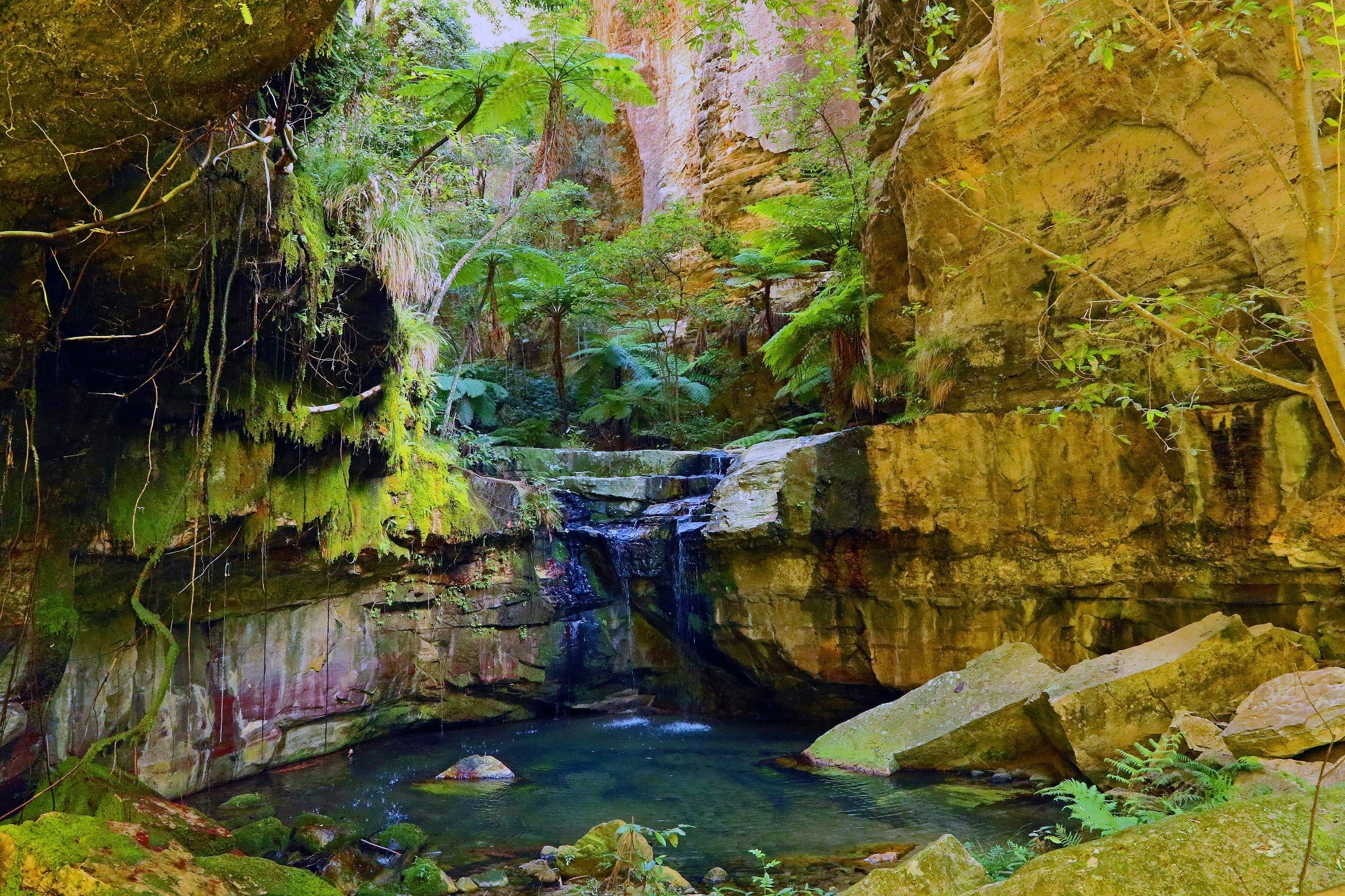 Glimpse of the Outback 5 Day Tour - Roma and Surrounds - Accommodation Fremantle