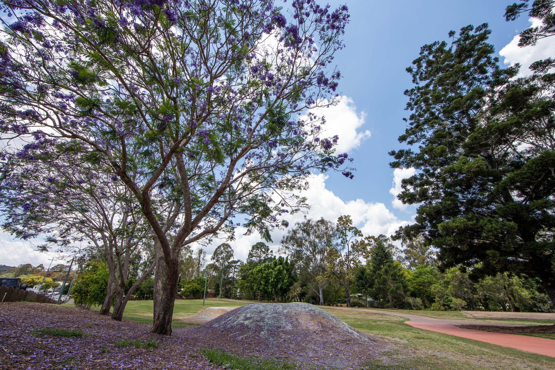 John Scott Park - Accommodation Fremantle