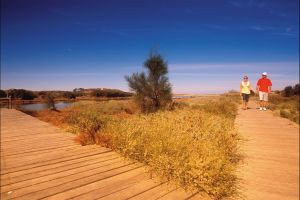 Irwin River Nature Trail - Accommodation Fremantle