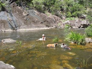 Mount Boss State Forest - Accommodation Fremantle