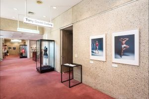 Tony Gould Gallery - Accommodation Fremantle