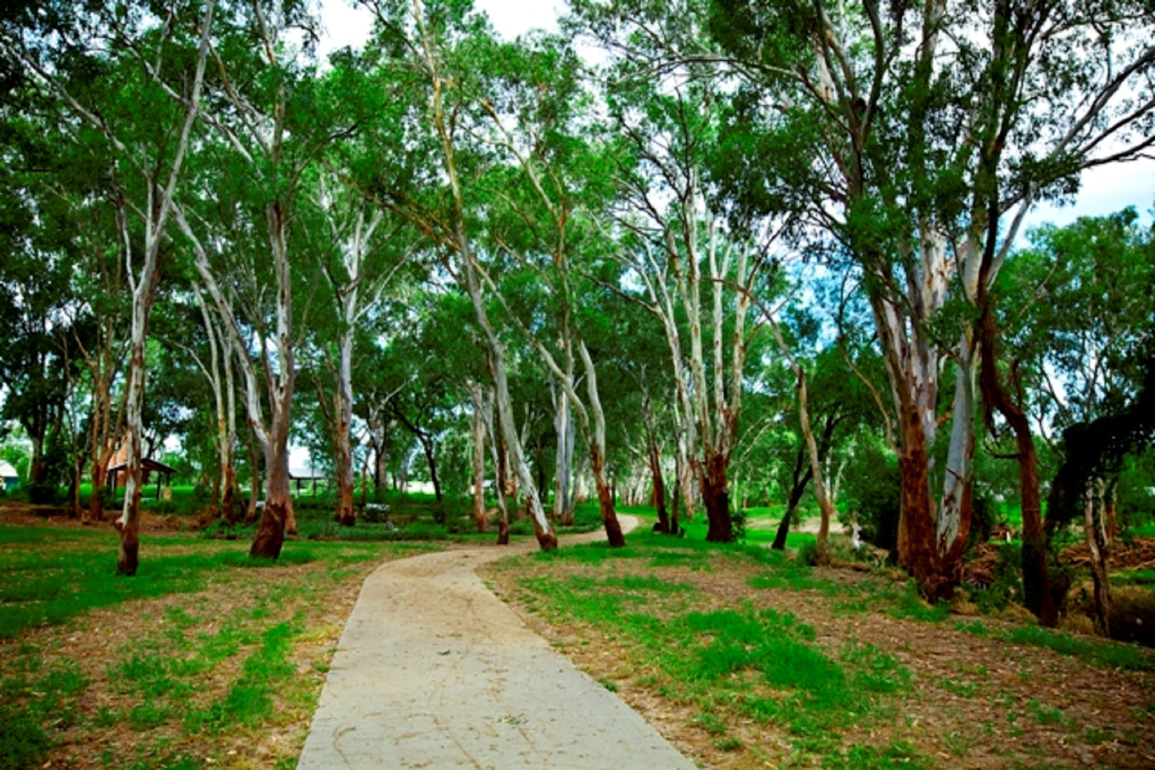 Adungadoo Pathway - Accommodation Fremantle