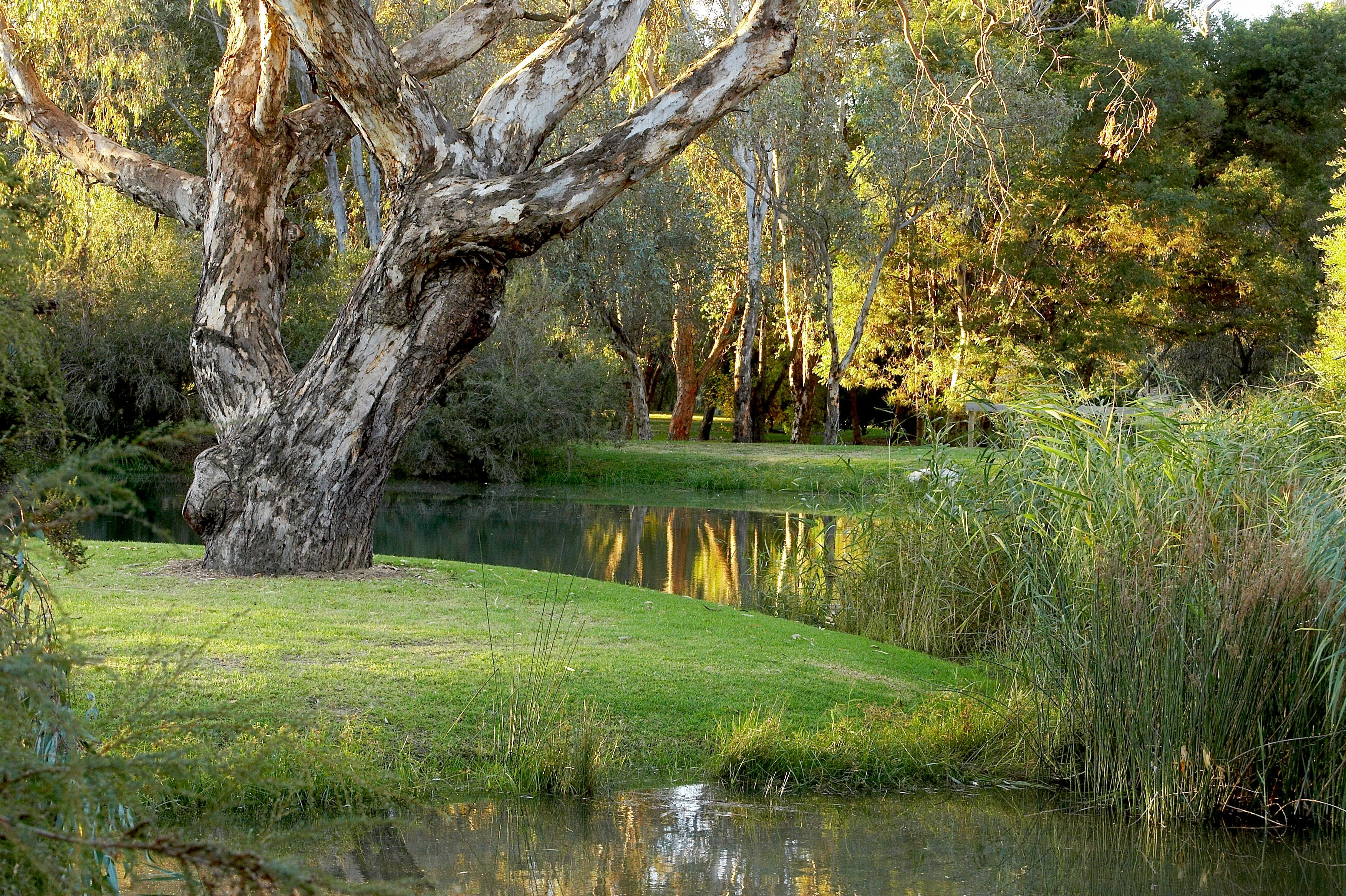 Gateway Island Parklands - Accommodation Fremantle