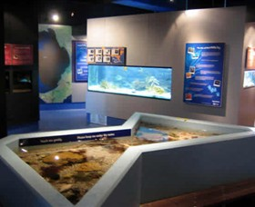 Marine and Freshwater Discovery Centre - Accommodation Fremantle