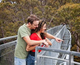 Valley of the Giants Tree Top Walk - Accommodation Fremantle