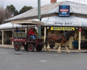 Bathurst Farm Experience - Accommodation Fremantle