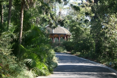 Royal Botanic Gardens Victoria - Accommodation Fremantle