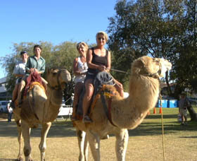 Calamunnda Camel Farm - Accommodation Fremantle