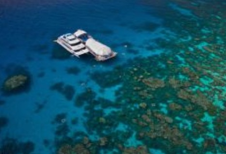 Great Adventures Reef and Green Island Cruises - Accommodation Fremantle