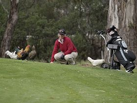 Tasmania Golf Club - The - Accommodation Fremantle