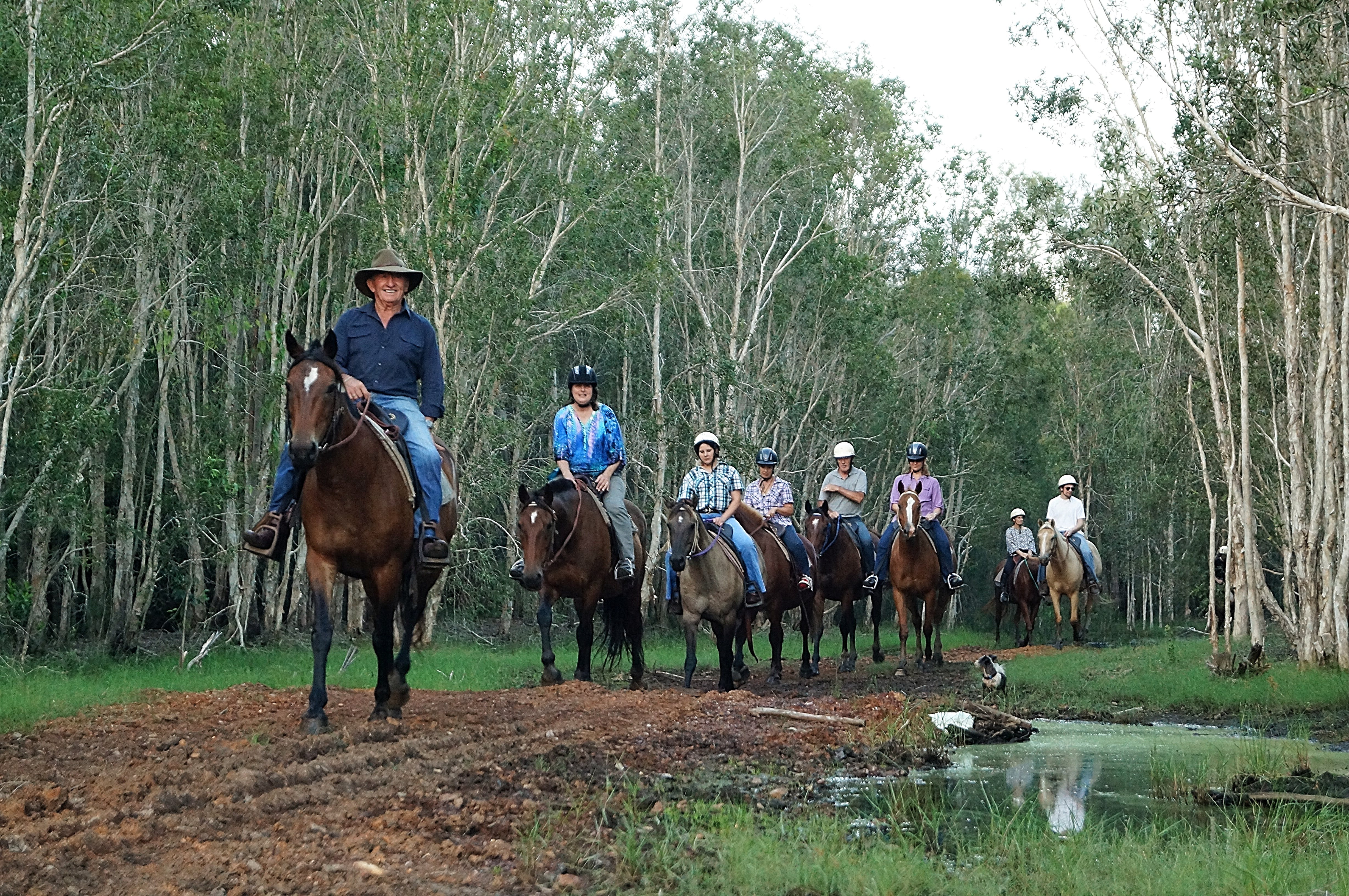 Night Horse Ride and Dinner - Accommodation Fremantle