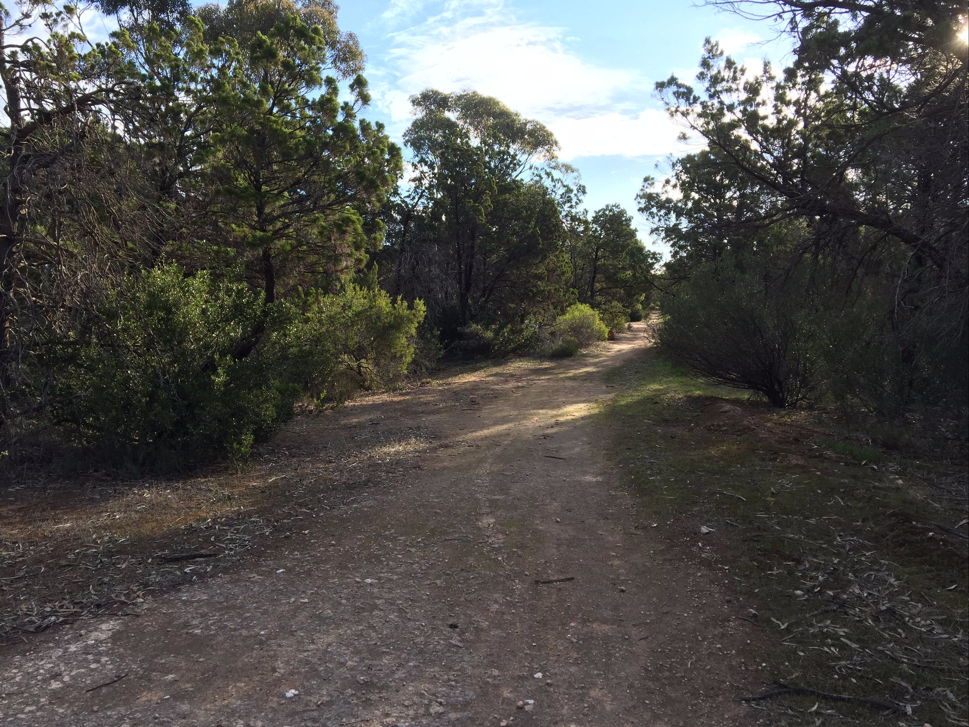 Victoria Park Moonta monthly walks - Accommodation Fremantle