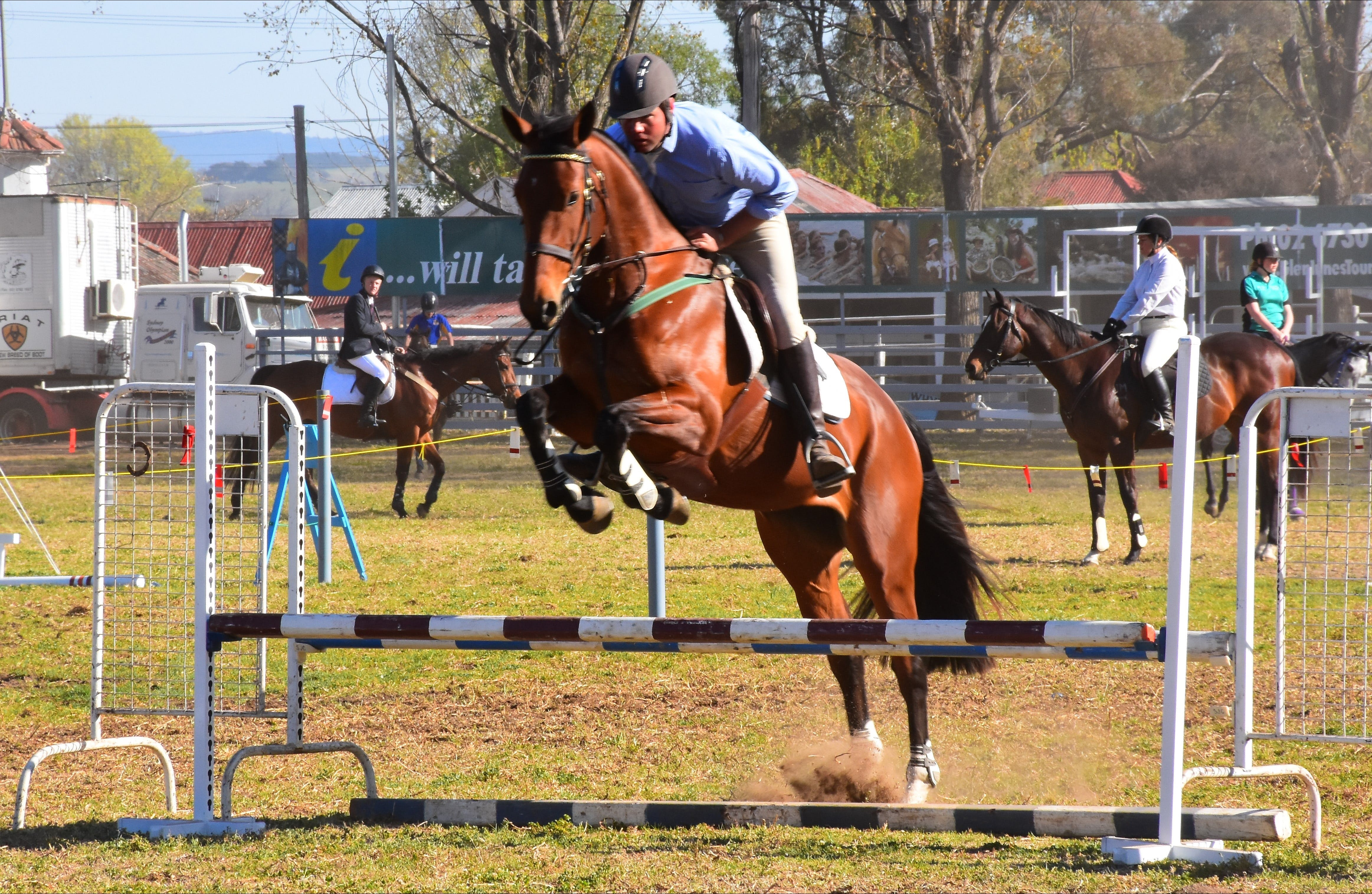 Glen Innes Pastoral and Agricultural Show - Accommodation Fremantle