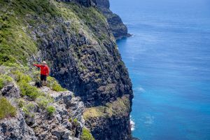 Seven Peaks Walk at Pinetrees Lord Howe Island - Accommodation Fremantle