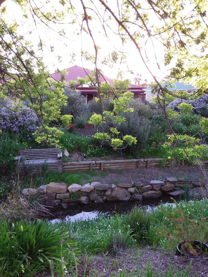Frog Song at Willunga - Accommodation Fremantle