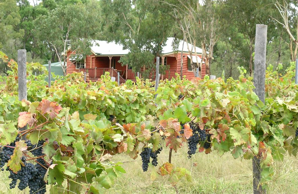 Fergies Hill Spa Cottage  Granite Ridge Wines - Accommodation Fremantle